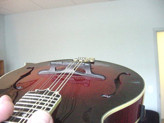 picture of bridge on mandolin