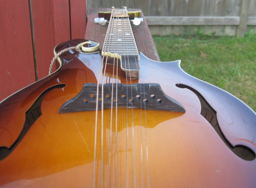 picture of mandolin