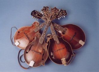 picture of mandolins